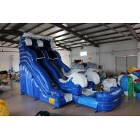 China Dolphin Inflatable Water Slide For kids wholesale