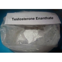 China Safe Anabolic Legal Steroids CAS 315-37-7 Testosterone Enanthate Injectable Steroids wholesale