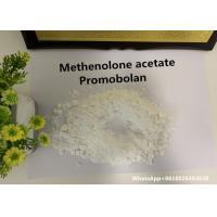 Legal Anabolic Steroids Methenolone acetate / Promobolan Depot  for fat loss