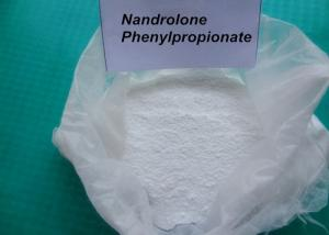 China Nandrolone Phenylpropionate CAS 62-90-8 / Deca Durabolin Injection For Bodybuilding wholesale