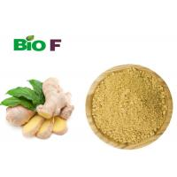 China Instant Vegetable Extract Powder Non - Polluted Dried Oganic Ginger Powder wholesale