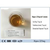China Semi Finished Injectable Bodybuilding Supplements Steroids Oil Ripex 225mg/ml wholesale