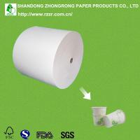 China PE coated hot drink cup paper wholesale
