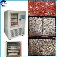 China factory price Fruit & Vegetable Processing freeze drying  Lyophilizer Freeze-Dried Pear Strawberry,Grape,Cherry Tomato wholesale