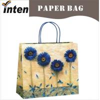 China fancy paper bags twisted handle on sale