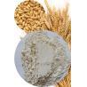 China Vital Wheat Gluten High Quality from Good Wheat 82.5% Min. (Nx6.25) wholesale