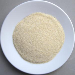 China Dehydrated garlic granules 40-80Mesh wholesale