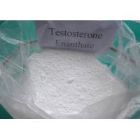 Quality Effective Testosterone Enanthate powder and Injectable liquid for Muscle Building CAS 315-37-7 for sale