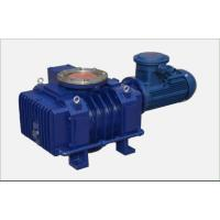 China Stable 1.5 Kw Roots Air Pump For Quickly Removing Gas From A Closed Container wholesale