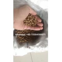 China catfish feed / tilapia fish feed on sale