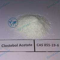 China China Testosterone Acetate / Clostebol Acetate (Turinabol) CAS 855-19-6 wholesale