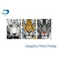 China Waterproof Three Way Flip Tiger 3D Lenticular Images Eco - Friendly wholesale