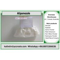 China 99% Assay Atipamezole Supplements For Weight Loss CAS 104054-27-5 wholesale