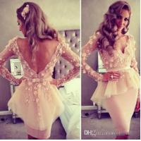 China V Neck Short Evening Party Dresses Long Sleeve Short Ivory Lace Flower Knee Length on sale