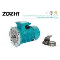 China 0.09KW 0.12Hp Three Phase Induction Motor For Coffee Machine wholesale