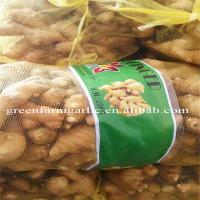 Buy cheap Jining greenfarm fresh yellow ginger from wholesalers