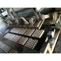 China Easy To Operate Paper Pulp Molding Machine , Apple Tray Making Machine wholesale