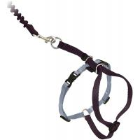 China Adjustable Nylon Cat Harness Collar With Bungee Leash wholesale