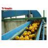China Automation Orange Juice Processing Line , Fruit Juice Manufacturing Plant Orange Extractor wholesale