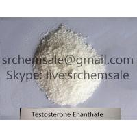 China 99% Purity White Powder Bodybuilding Supplements Steroids Testosterone Propionate wholesale