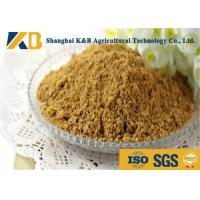 China Purity Easy Absorb Fish Powder Fertilizer / Fish Meal Feed For Shrimp wholesale