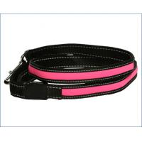 China Comfort Grip Handle LED Pet Leash High Visibility Industrial Strength Materials wholesale