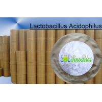 China Probiotic Lactobacillus Acidophilus Animal Feed Additives Powder 100BI CFU/G SEM-LA100BI on sale