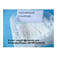 China Increases Energy Testosterone Enanthate Powder Prevents Against Bone Loss 315-37-7 wholesale
