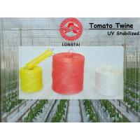 China 1mm 1.5mm Colorful Polypropylene Twine For Tomato Tying / Poly Twine Rope wholesale