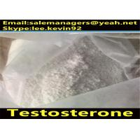 China Bodybuilding Testosterone Based Steroids Cas 58-22-0 For Muscle Growth wholesale