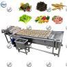 China SUS304 Vegetable Washing Equipment , Fruit And Vegetable Processing Equipment wholesale