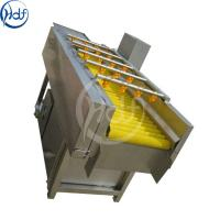 China Potato / Tomato Commercial Vegetable Washer , Vegetable Cleaning Machine wholesale