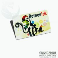 China Cartoon vip pvc card/plastic gift card with high quality on sale