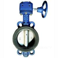 China DN100,PN10 wafter type Plastic butterfly valve with worm gearbox wholesale