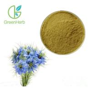 China Black Cumin Seed Herbal Plant Extract Nigella Sativa Extract Powder UV / HPLC Test on sale