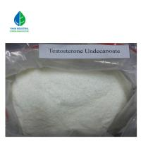 China Anabolic Steroid Compound Testosterone Undecanoate Powder For Mucle Building wholesale