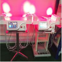 China Vertical Cold Laser Lipo Machine / Laser Weight Loss Machine Higher Safe Standard wholesale
