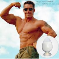 China Anabolic Steroid Hormone Testosterone Undecanoate (CAS 5949-44-0) on sale