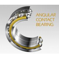 China Stainless Steel Double-row Angular Contact Ball Bearing S5208 2RS, S5208 ZZ wholesale