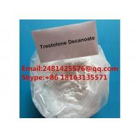 China White Trenbolone Powder 99% Purity Raw Muscle Growth Anabolic Steriods wholesale