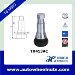 China TR413AC Zinc Alloy Tubeless Tire Valve Stem Wheel Accessories 42.5 A / mm wholesale