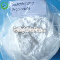 China 99.25% Purity Testosterone Steroids White Powder Testosterone Propionate for Muscle Growth wholesale