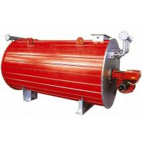China Industrial Gas Fired Horizontal Thermal Oil Heating Boiler Efficiency 300kw wholesale