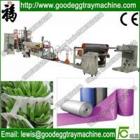 China Expanded PE foaming floor underlay making machine wholesale