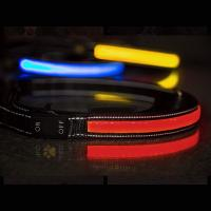 China Glow In The Dark LED Flashing Dog Leash Comfort Grip Handle 5 Feet Length wholesale