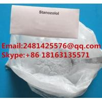 China High 99% Purity Steroids Winstrol / Stanozolol Powder CAS 10418-03-8 For Bodybuilding wholesale