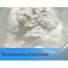 China White Testosterone Anabolic Steroid Testosterone Enanthate Test E Powder wholesale