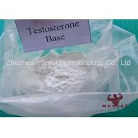China Professional Strongest Testosterone Steroid Testosterone Base Powder CAS 58-22-0 wholesale