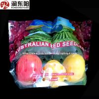 China Stand Up Fruit Packaging Bags PE Laminated Punch Zipper Lock Moisture Proof wholesale