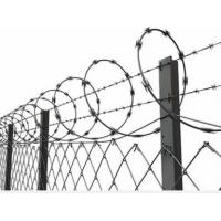 China Concertina Barbed Wire with Galvanized Zinc Coated Chain Link Fence for High Security wholesale